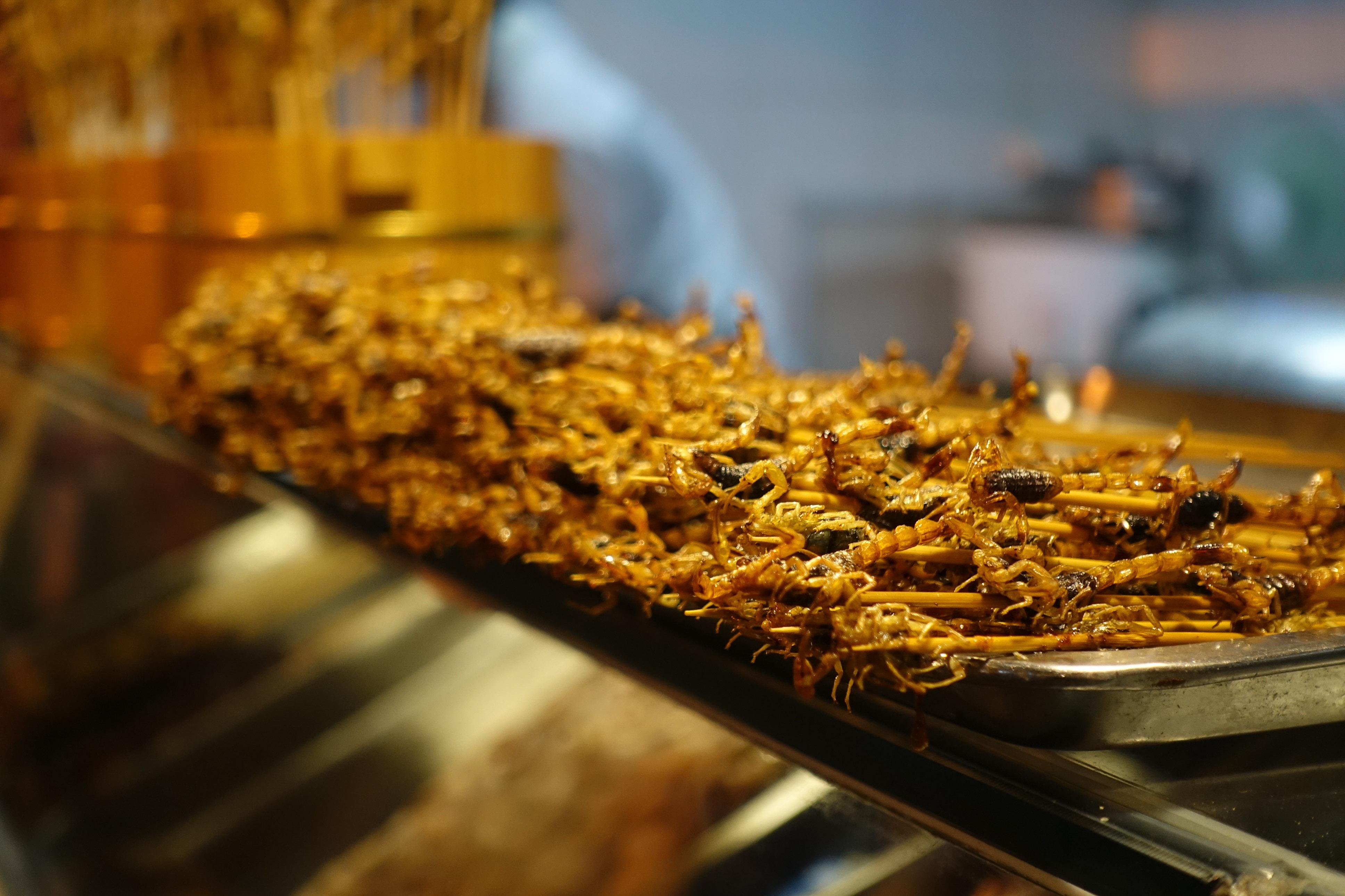 Fried scorpions in the Wangfujing snack street